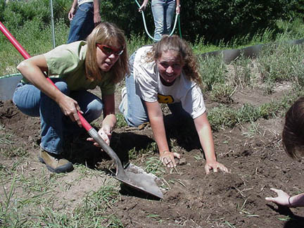 Teacher & Student transplanting knapweed
